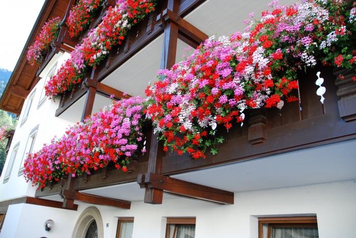 Apartments thaler - ortisei - val gardena dolomites.