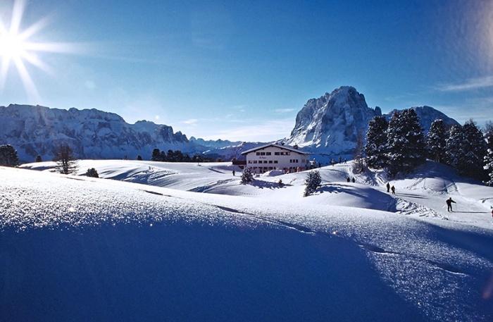 Col Raiser Winter